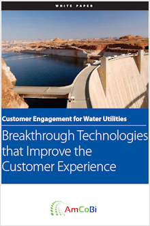 B2B Software White Paper - Utility Customer Portal